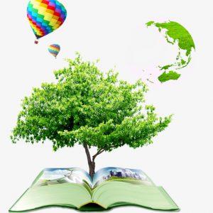 Đánh giá tác động môi trường chiến lược là gì?
