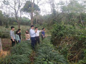 Triển khai hướng dẫn đào tạo tiêu chuẩn Nông nghiệp Hữu cơ tại công ty DKNATURA